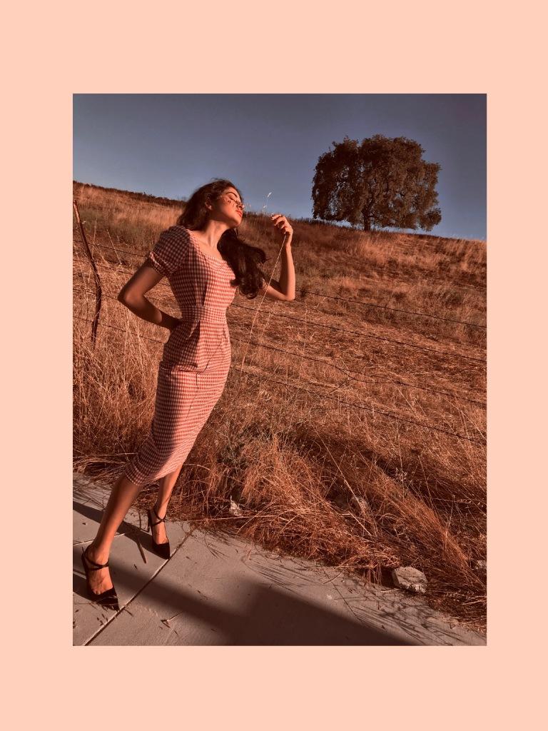 Midi Gingham Dress, Fashion Editorial Wizard Of Oz, Asha Raval Fashion Blog, palo alto fashion blog, San Francisco fashion blog, Gingham dress trend summer 2018, Vogue Editorial, Fashion Blog Editorial, Black Zara Pumps, Grace Coddington Editorial, Asha Raval Fashion Icon, Summer Outfit, Indian Blogger, Fashion Blogger Street Style, Fashion Portrait, Ms Coffee and Cream fashion blog